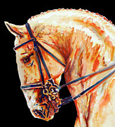 Amazing Drawings Framed Prints - Golden Horse Head In Black Framed Print by Juan Jose Espinoza