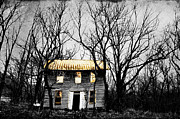 Old Abandoned Houses Posters - Golden House Poster by Emily Stauring