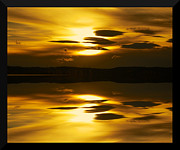 Sunset Framed Prints Metal Prints - Golden Metal Print by Kevin Bone