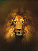 Power Animal Posters - Golden King Lion Poster by Robert Foster