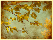 Nina Bradica Metal Prints - Golden Leaves-2 Metal Print by Nina Bradica