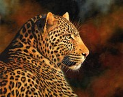 Wolf Painting Posters - Golden Leopard Poster by David Stribbling