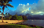 Hanalei Framed Prints - Golden Light on Hanalei Framed Print by Kathy Yates