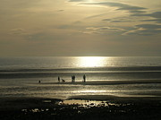 Avis  Noelle - Golden Light on Walney...