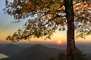 Nc Prints - Golden Lights Print by Debra and Dave Vanderlaan