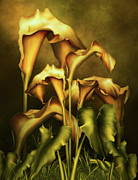 Vivid Colorful Flowers Prints - Golden Lilies By Night Print by Zeana Romanovna