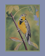 Tree Leaf Pastels Framed Prints - Golden Meadowlark M Framed Print by Kathryn Yoder