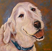 Retriever Drawings - Golden Meditation by Susan A Becker
