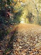 Leslie Hunziker - Golden Path