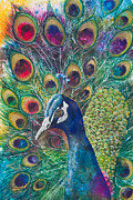 Tail Mixed Media Posters - Golden Peacock Poster by Patricia Allingham Carlson