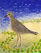 Wildlife Glass Art Metal Prints - Golden Plover Metal Print by Anna Skaradzinska