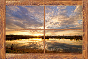 Golden Ponds Sunset Reflections  Barn Wood Picture Window View Print by James BO  Insogna