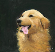 Golden Retriever Mixed Media - Golden Retriever by Caitlin Pennington
