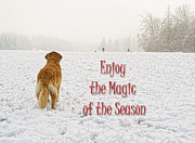 White Dogs Posters - Golden Retriever Dog Magic of the Season Poster by Jennie Marie Schell