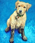 Golden Retriever Puppy Framed Prints - Golden Retriever Mudpuppy Framed Print by Dottie Dracos