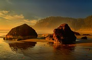 Oregon State Art - Golden Rocks Of Ecola by Adam Jewell