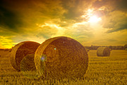 Sunrays Pyrography Posters - Golden Sky And Golden Straw Bales Poster by Boon Mee
