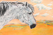 Mustang Pastels Metal Prints - Golden Sky Metal Print by Jeanne Fischer