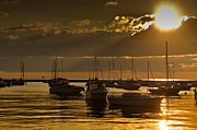 Boats Originals - Golden Sunrise Chicago by Steve Gadomski