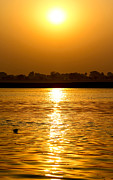 Ganga Photos - Golden Sunrise by Gaurav Singh