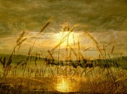 Saint Jean Art Gallery Prints - Golden Sunset Print by Barbara St Jean