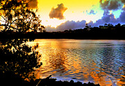 Scenery Glass Art Metal Prints - Golden sunset over Terranora Metal Print by Kevin Perandis