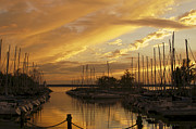 Barkley Prints - Golden Sunset with Sailboats Print by Jane Eleanor Nicholas