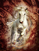 Beautiful Manes Prints - Golden Thunder Print by Melinda Hughes-Berland