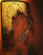 Red Leaf Digital Art - Golden touch of Autumn by Gun Legler