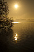 Evening Photo Posters - Golden Ullswater Evening Poster by Meirion Matthias