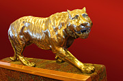 Cast Sculpture Posters - Golden Walking Tiger Poster by Linda Phelps