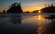 Cannon Beach Framed Prints - Golden Washington Coast Evening Framed Print by Mike Reid