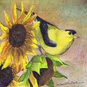 Susan Herbst - Goldfinch and Sunflowers