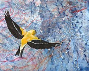 Goldfinch Drawings - Goldfinch in Flight by Sara Bell