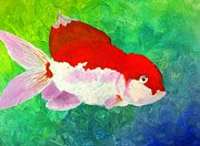 X-15 Prints - Goldfish Print by MaryEllen Frazee