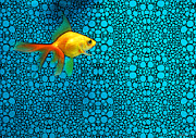 Goldfish Framed Prints - Goldfish Study 3 - Stone Rockd Art By Sharon Cummings Framed Print by Sharon Cummings