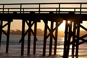 Sun Studio Photos - Goleta Pier Sun Burst by John Daly