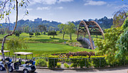 David  Zanzinger - Golfers Bridge