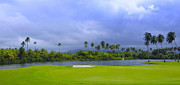 Puerto Rico Art - Golfers Paradise by Stephen Anderson