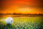 Focus On Foreground Originals - Golfing at Sunset Light by Albert Valles