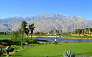 Country In Winter Prints - Golfing In Winter Palm Springs Print by Randall Weidner