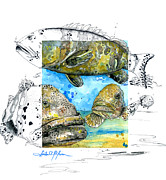 South Sea Mixed Media Prints - Goliath Grouper Print by Amber M  Moran