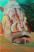 Brien Hockman - Goliath Grouper