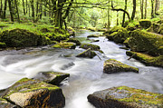 Kernow Photos - Golitha Falls by Helen Hotson
