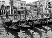 Rialto Prints - Gondolas In Black Print by Mel Steinhauer