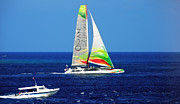 Catamaran Prints - Gone with Wind I Print by Jenny Rainbow