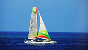 Catamaran Prints - Gone with Wind Print by Jenny Rainbow