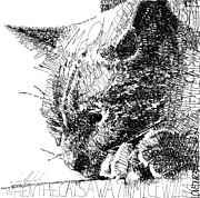 Word Portrait Drawings Posters - Good Kitty Poster by Michael  Volpicelli