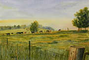 Todd Derr Prints - Good Mornin Cows Print by Todd Derr