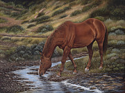 Quarter Horses Originals - Good Ol Red by Ricardo Chavez-Mendez